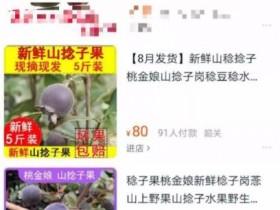 偏门生意:贩卖农村野果子1个月赚4万块钱
