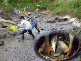 不起眼的偏门赚钱门路,农村小伙靠抓鱼3月赚5万