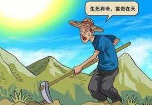 一个人操作竹子酒月赚10W+,不赚钱就是你懒!